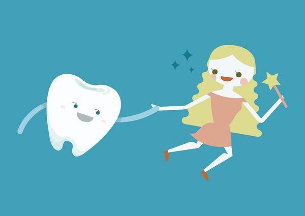 Se hvad tandfeen har tabt   Foto  Colourbox com    13981187